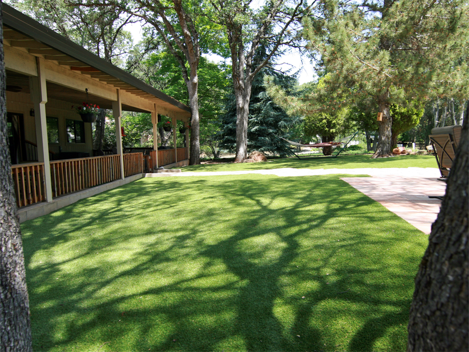Artificial Grass Carpet Hilltop Lakes Texas Dog Running