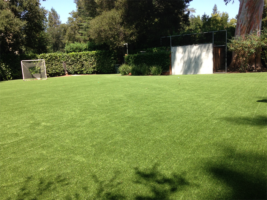 Artificial Grass: Artificial Grass Installation Fresno, Texas Football Field, Backyard Ideas