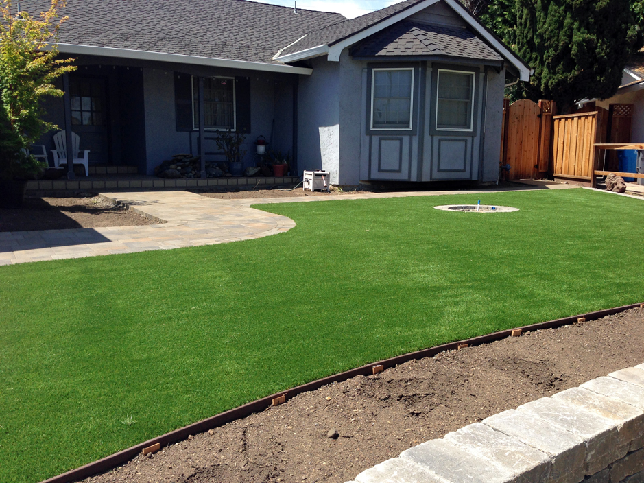 Fake grass carpet galveston texas landscaping front yard for Best grass for landscaping