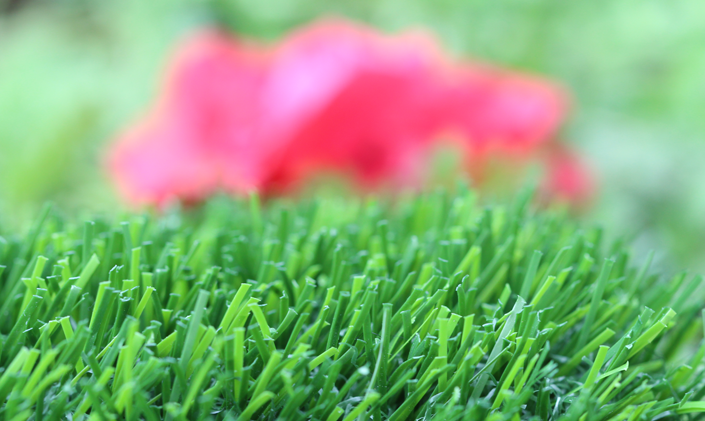 Artificial Grass Evergreen-80 Artificial Grass Houston, Texas