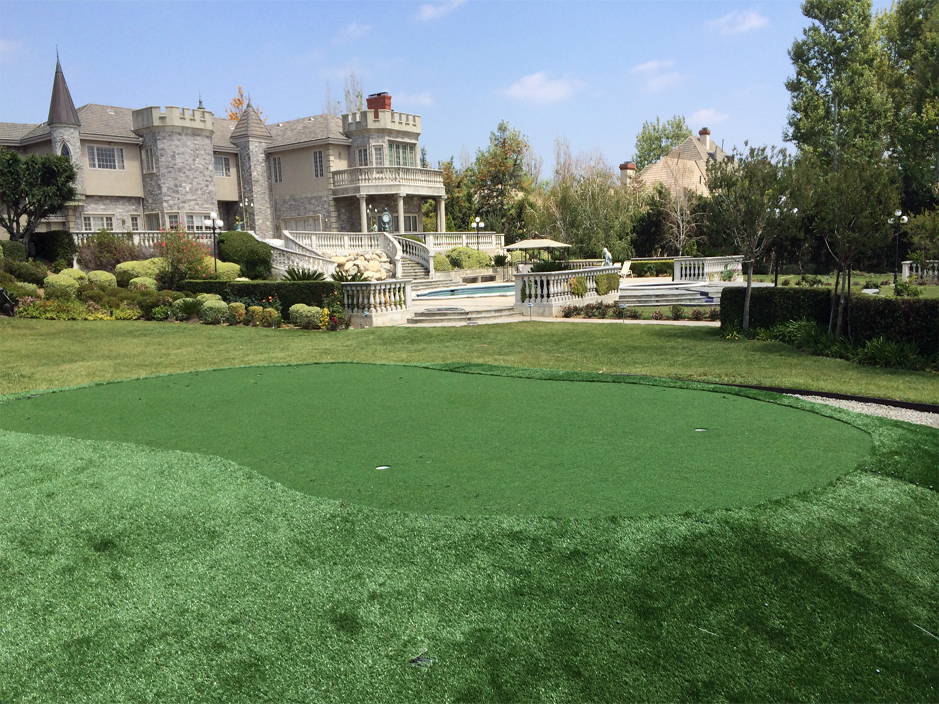 Artificial Grass: Grass Turf Friendswood, Texas Office Putting Green, Front Yard Landscape Ideas