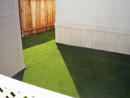 Artificial Grass Photos: Artificial Grass Burton, Texas Gardeners, Small Backyard Ideas