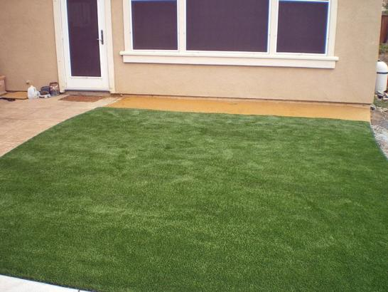 Artificial Grass Photos: Artificial Grass Carpet Fayetteville, Texas Roof Top, Beautiful Backyards