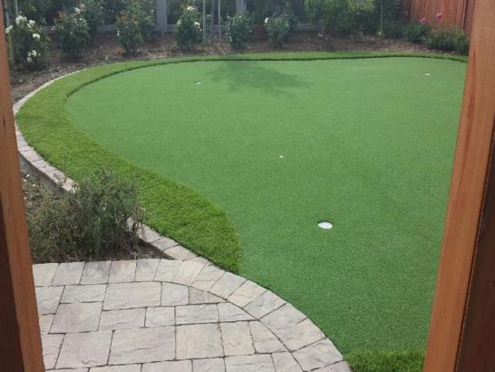 Artificial Grass Photos: Artificial Grass Carpet Fulshear, Texas Lawns, Backyard Garden Ideas