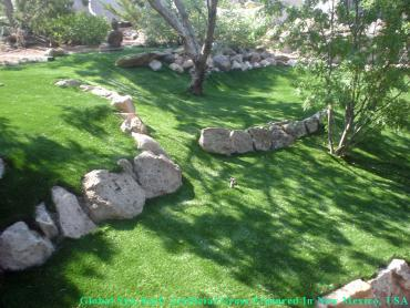 Artificial Grass Carpet Galena Park, Texas Roof Top, Pavers artificial grass