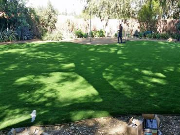 Artificial Grass Photos: Artificial Grass Carpet Jacksonville, Texas Landscape Rock, Backyard Landscape Ideas