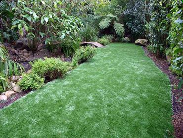 Artificial Grass Photos: Artificial Grass Carpet Round Rock, Texas Rooftop, Backyard Ideas