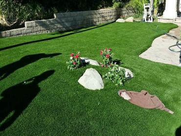 Artificial Grass Photos: Artificial Grass Georgetown, Texas Lawns, Landscaping Ideas For Front Yard