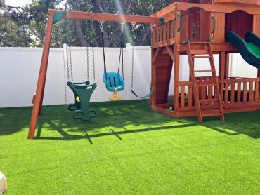 Artificial Grass Photos: Artificial Grass Kosse, Texas Landscaping Business, Small Backyard Ideas