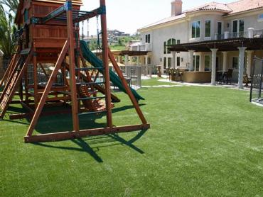 Artificial Grass Photos: Artificial Grass Oak Island, Texas Landscaping, Backyard Landscaping Ideas