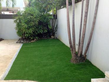 Artificial Grass Photos: Artificial Lawn Hallsburg, Texas Lawns, Backyard Landscaping Ideas