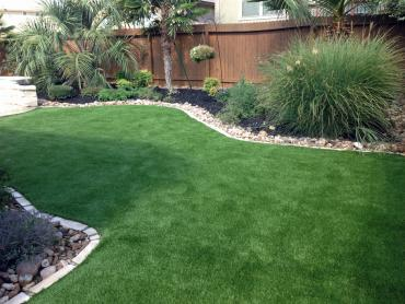 Artificial Grass Photos: Artificial Lawn Tivoli, Texas Backyard Playground, Backyard Landscape Ideas