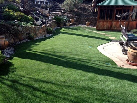 Artificial Grass Photos: Artificial Turf Calvert, Texas Design Ideas, Backyard Makeover