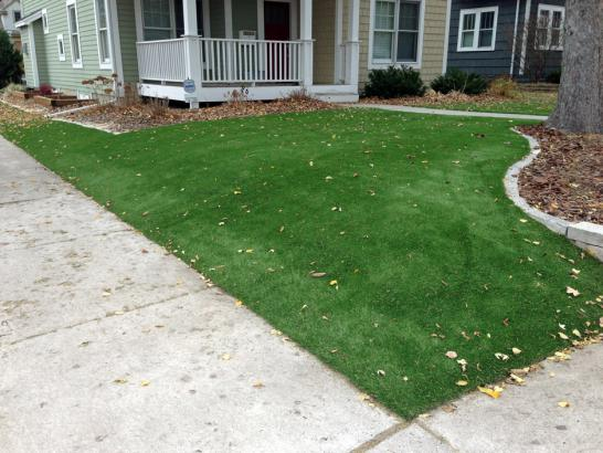 Artificial Grass Photos: Artificial Turf Cost Cinco Ranch, Texas Lawn And Garden, Landscaping Ideas For Front Yard