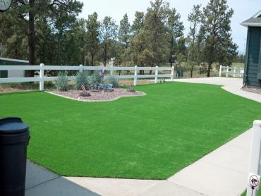 Artificial Grass Photos: Artificial Turf Cost Porter Heights, Texas Design Ideas, Front Yard Landscaping