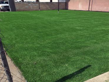 Artificial Grass Photos: Artificial Turf Cost Thorndale, Texas Softball