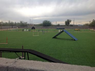 Artificial Grass Photos: Artificial Turf Groesbeck, Texas Backyard Sports, Recreational Areas
