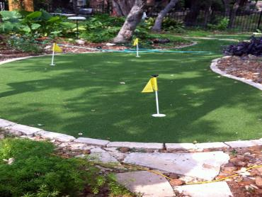 Artificial Grass Photos: Artificial Turf Installation Needville, Texas Landscaping Business, Backyards