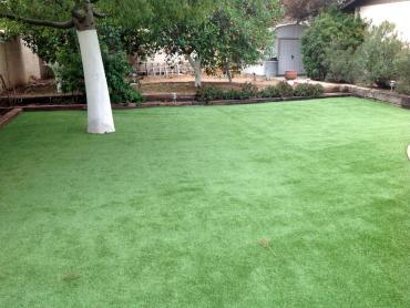 Artificial Grass Photos: Artificial Turf Sunset Valley, Texas Landscape Design, Backyard Landscaping