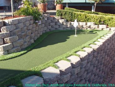 Best Artificial Grass Hilshire Village, Texas City Landscape, Backyard Design artificial grass