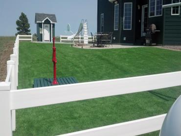 Artificial Grass Photos: Best Artificial Grass Waelder, Texas Lawn And Landscape, Front Yard