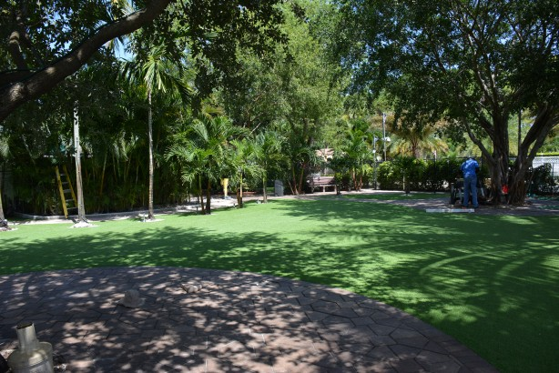Can You Tell Real or Fake? 19 out of 20 people make a mistake... artificial grass