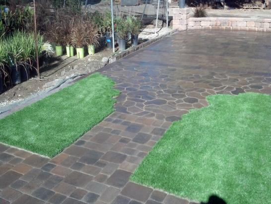 Artificial Grass Photos: Fake Grass Carpet Edna, Texas Rooftop, Backyard Landscape Ideas