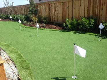 Artificial Grass Photos: Fake Grass Carpet Indian Springs, Texas Putting Green Grass, Backyard Ideas
