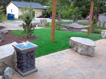 Artificial Grass Photos: Fake Grass Carpet Sam Rayburn, Texas Rooftop, Front Yard Landscape Ideas