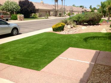 Artificial Grass Photos: Fake Lawn Hilshire Village, Texas Rooftop, Front Yard Landscape Ideas