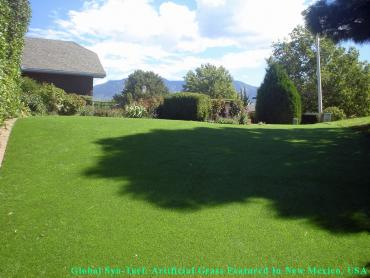 Artificial Grass Photos: Fake Lawn Hunters Creek Village, Texas Lawns, Backyard Makeover