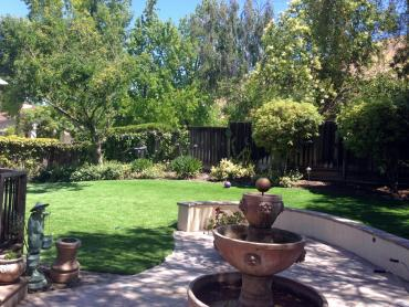 Artificial Grass Photos: Fake Lawn Liverpool, Texas Landscape Ideas, Small Backyard Ideas