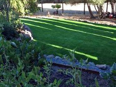 Artificial Grass Photos: Fake Lawn Marlin, Texas Landscape Rock, Backyards
