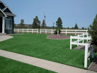 Artificial Grass Photos: Fake Lawn Wells, Texas Backyard Deck Ideas, Front Yard