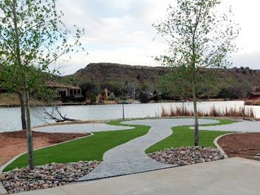 Fake Turf Fresno, Texas Landscaping Business artificial grass
