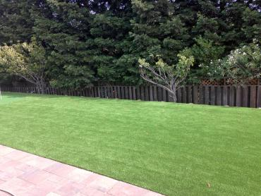 Artificial Grass Photos: Fake Turf Houston, Texas Garden Ideas, Beautiful Backyards