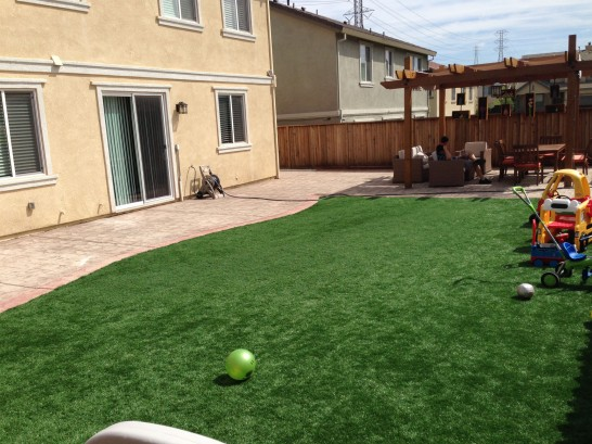 Artificial Grass Photos: Fake Turf Nixon, Texas Lawn And Landscape, Backyard Design