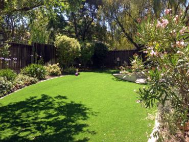 Artificial Grass Photos: Faux Grass Danbury, Texas Backyard Playground, Beautiful Backyards