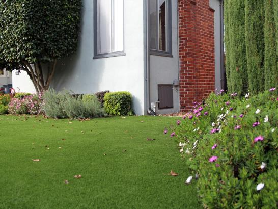 Artificial Grass Photos: Faux Grass Lott, Texas Landscape Design, Front Yard Landscaping Ideas