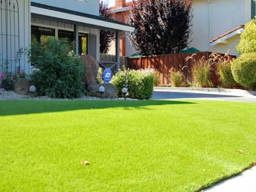 Artificial Grass Photos: Grass Installation Southside Place, Texas Roof Top, Front Yard Landscaping Ideas