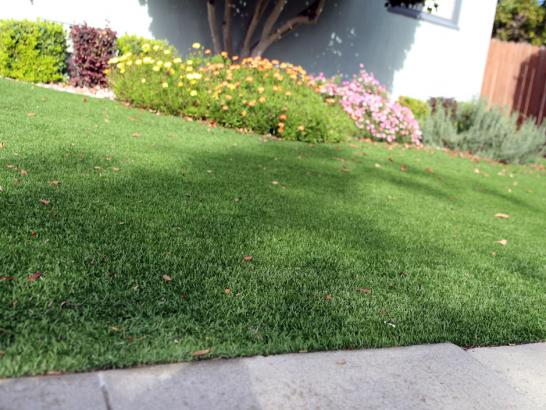 Artificial Grass Photos: Grass Turf Bay City, Texas Landscape Photos, Front Yard Landscaping