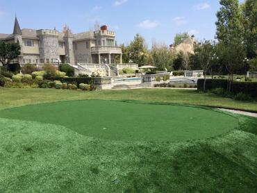 Artificial Grass Photos: Grass Turf Friendswood, Texas Office Putting Green, Front Yard Landscape Ideas