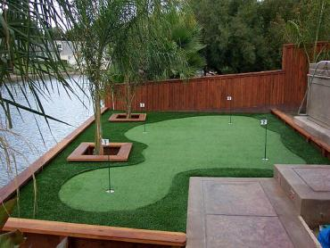 Artificial Grass Photos: Grass Turf Hutto, Texas Outdoor Putting Green, Backyards