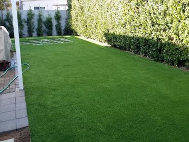 Artificial Grass Photos: Green Lawn Hays, Texas Pet Turf, Backyards