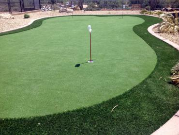 Artificial Grass Photos: How To Install Artificial Grass Belton, Texas Indoor Putting Green, Backyard Garden Ideas