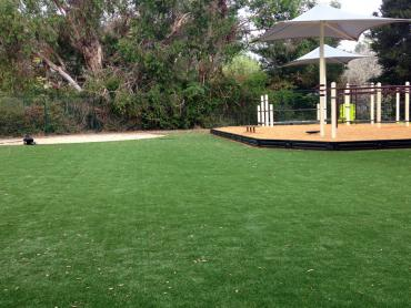 Artificial Grass Photos: How To Install Artificial Grass Luling, Texas Playground Safety