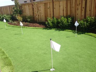 Artificial Grass Photos: Installing Artificial Grass Little River-Academy, Texas Landscaping Business, Backyard Design
