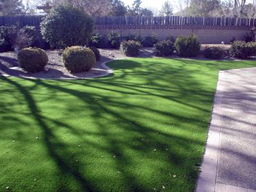 Artificial Grass Photos: Installing Artificial Grass Port Arthur, Texas Design Ideas, Small Front Yard Landscaping