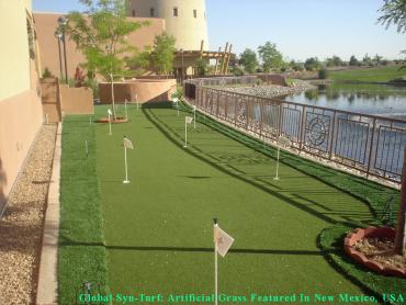 Lawn Services Bellaire, Texas Putting Green Turf, Backyard Garden Ideas artificial grass