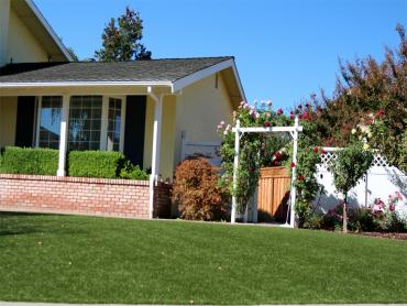 Artificial Grass Photos: Lawn Services Garrison, Texas Backyard Playground, Front Yard Landscape Ideas